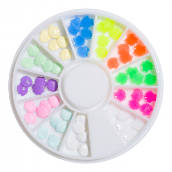 Mini Muscheln Charms Rondell - 12 Farben Neon - Pastell
